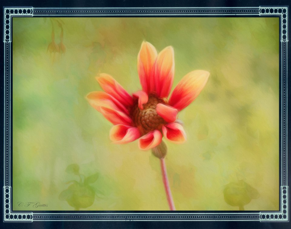 CFG_20140915_3716-Edit.jpg